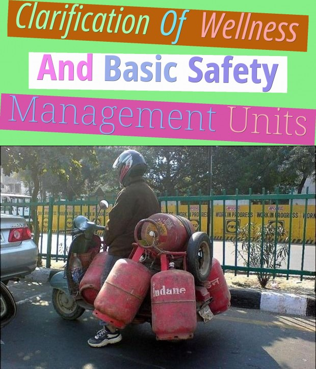Clarification Of Wellness And Basic Safety Management Units