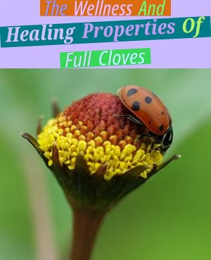 The Wellness And Healing Properties Of Full Cloves